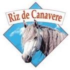 Canavere Camargue ris